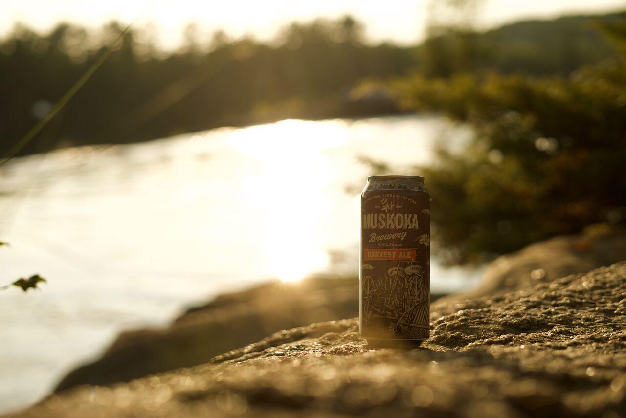 Blog - Sep - Featured Image - Harvest Ale Shoreline