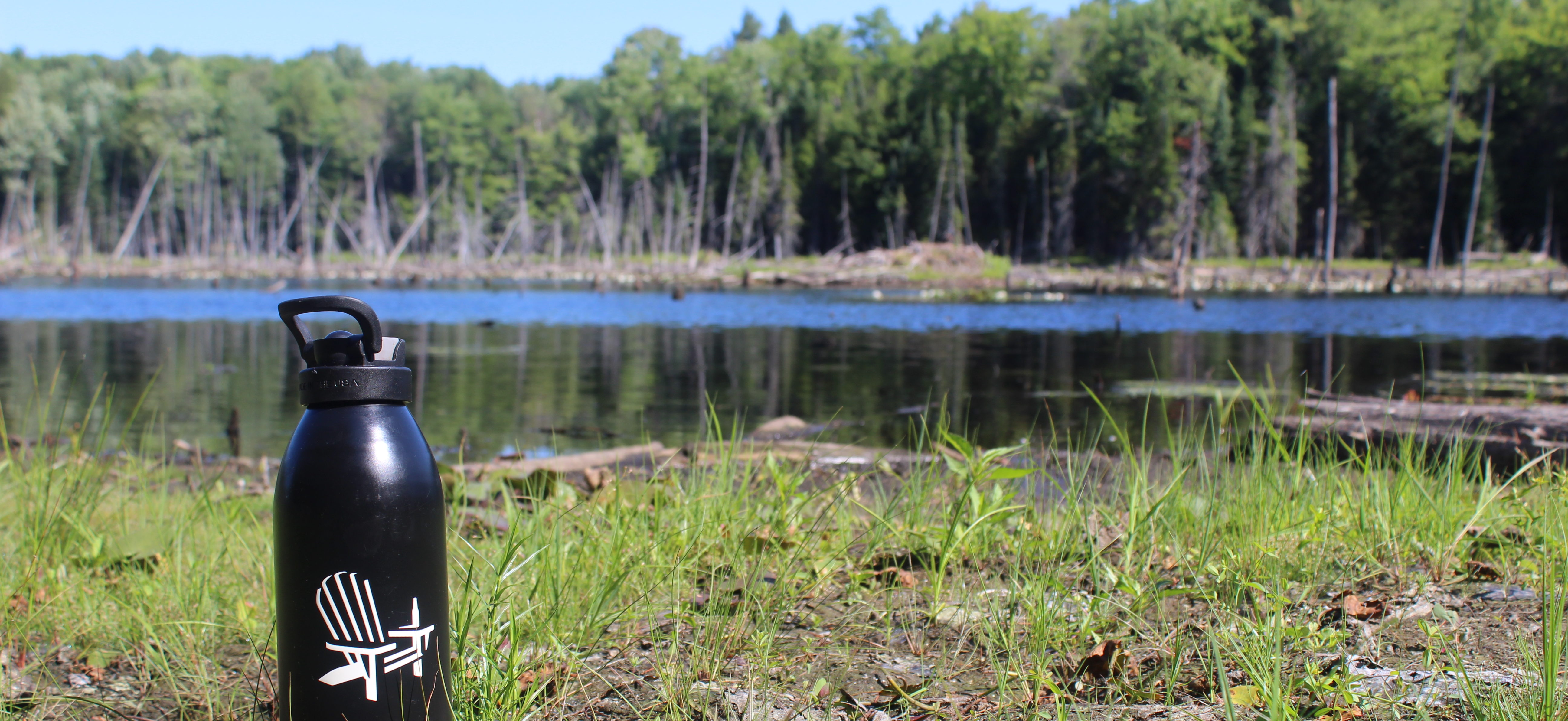 Muskoka Brewery bottle on the wetlands of Upjohn Conservation Area