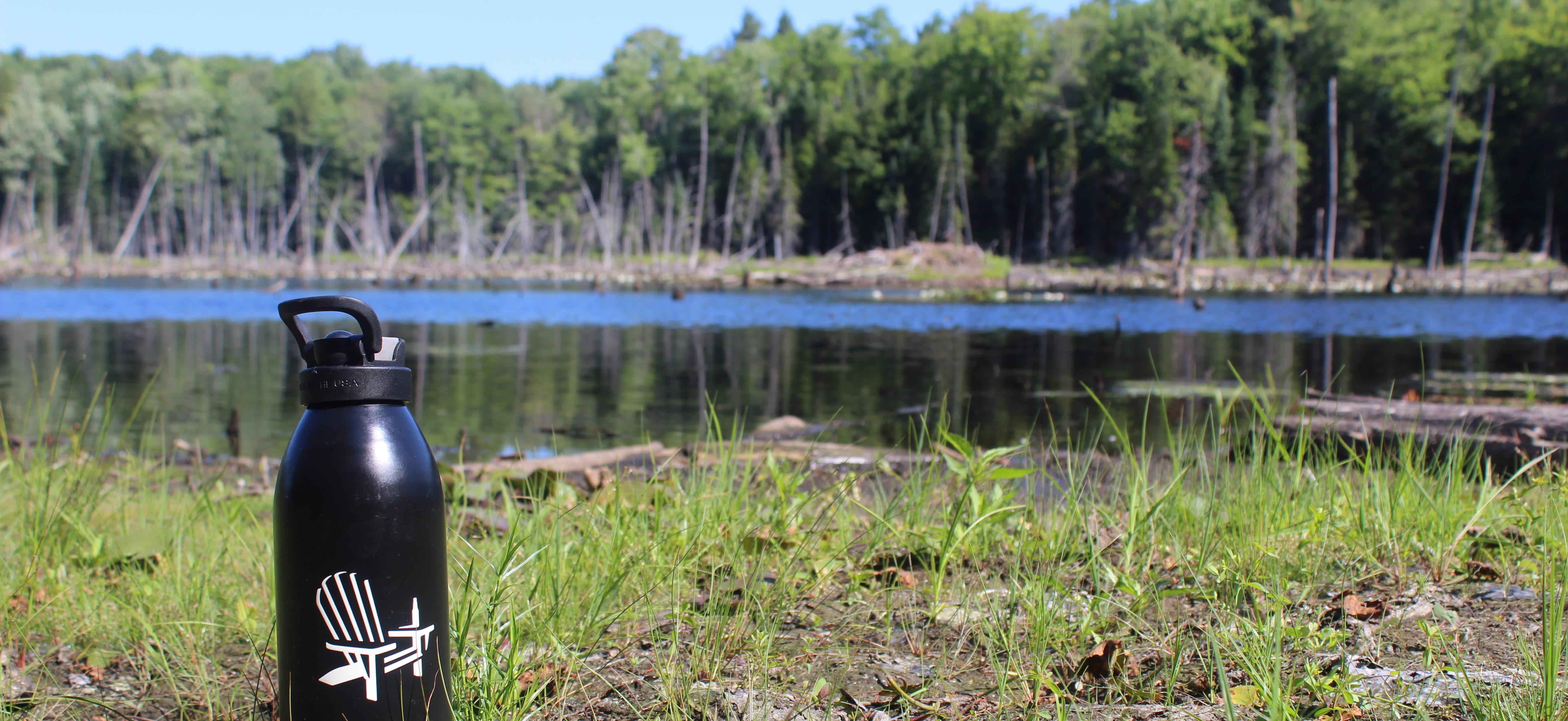 Muskoka Brewery bottle on the wetlands of Upjohn Conservation Area